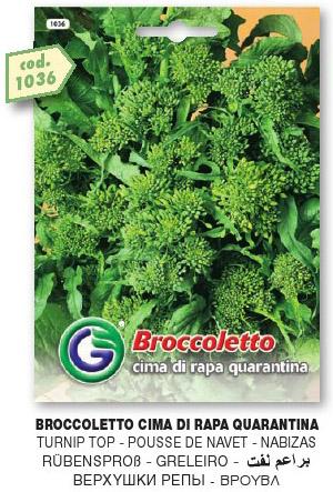 Broccoletto CIMA DI RAPA quarantina in busta maxi