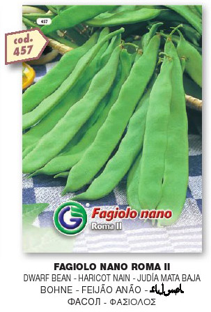Fagiolo nano ROMA 2 gr100