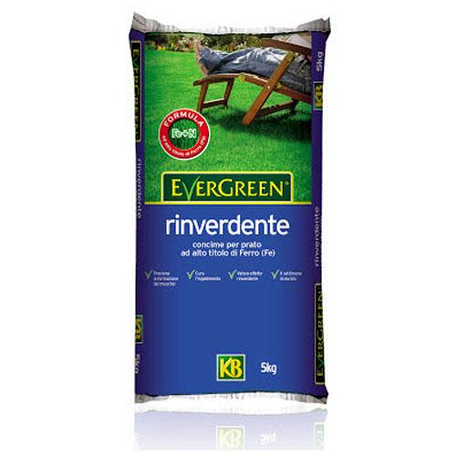 Evergreen RINVERDENTE granulare kg5 per prato con effetto ANTIMUSCHIO