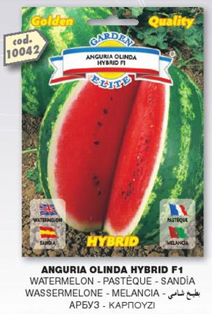 Anguria OLINDA HYBRID F1 in busta maxi