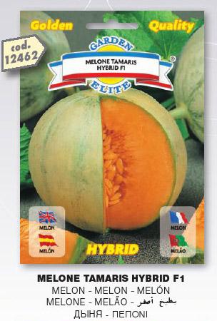 Melone TAMARIS HYBRID F1 in busta maxi