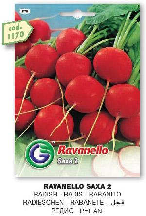Ravanello SAXA 2 in busta gr100