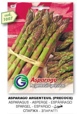 Asparago Argentuil (precoce) in busta maxi