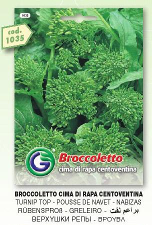 Broccoletto CIMA DI RAPA centoventina in busta maxi