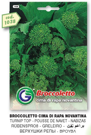 Broccoletto CIMA DI RAPA novantina in busta maxi
