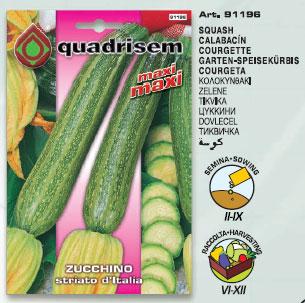 Zucchino STRIATO d'Italia in busta maxi maxi