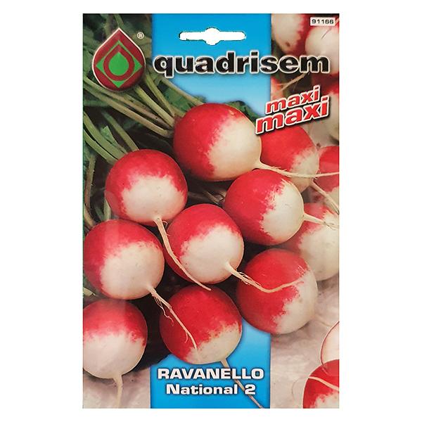 Ravanello tondo a punta bianca NATIONAL 2 confezione kg1