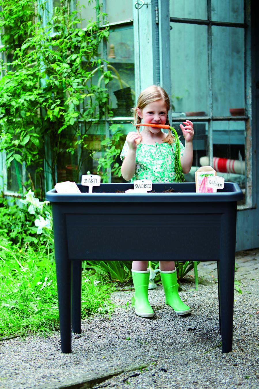 Compracomodo seminiera con coperchio grow table in - Lotta alle talpe in giardino ...