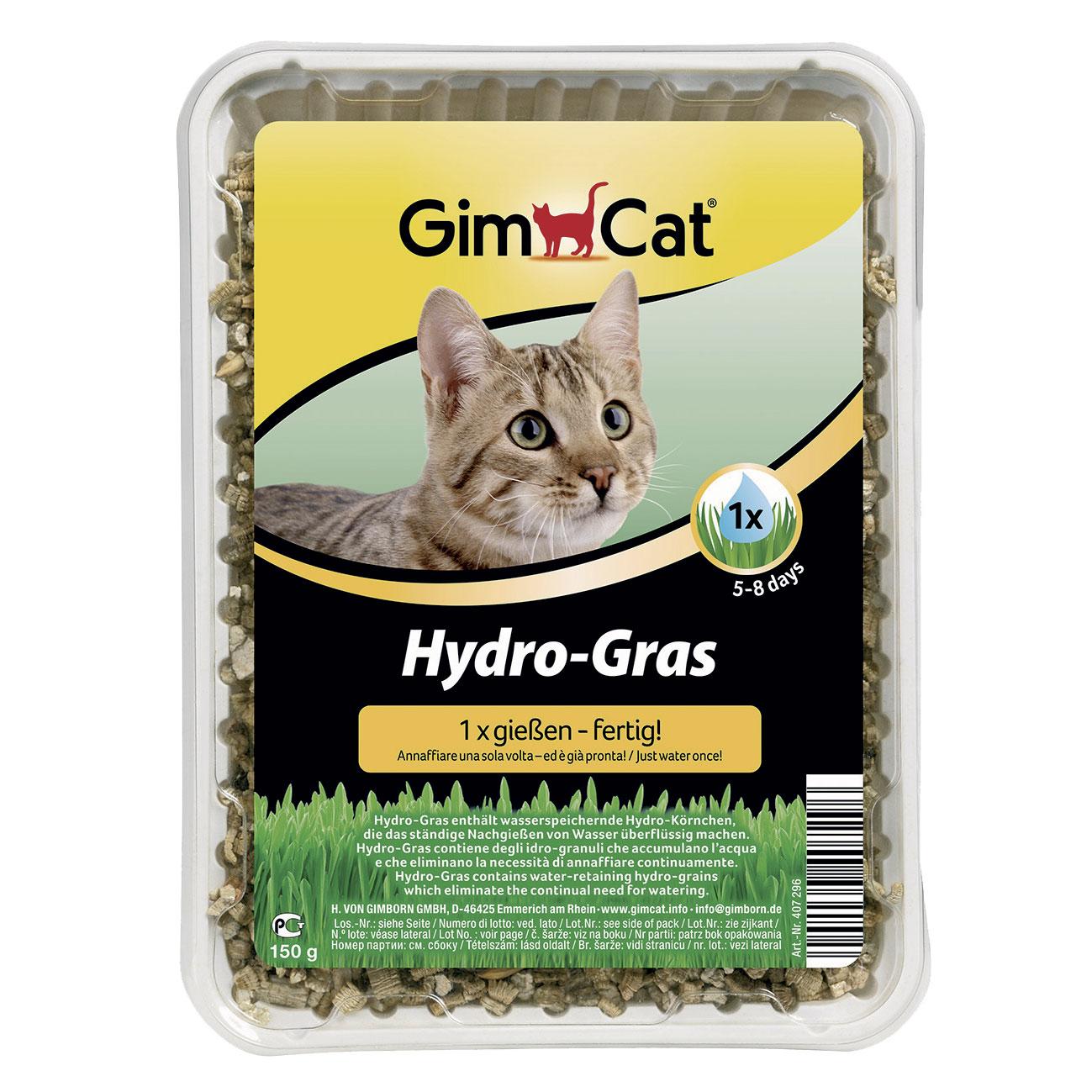 Hydro-Grass erba per GATTI gr150 basta annaffiare una volta ed è pronta