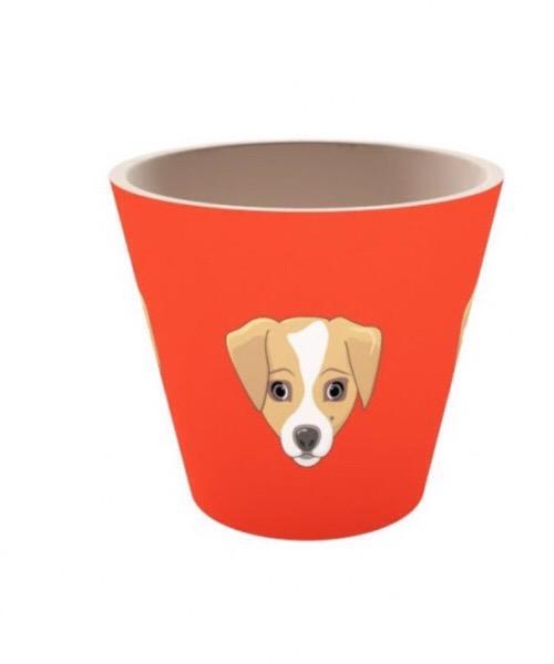 QUY CUP Tazza Espresso in bambù. 90ml